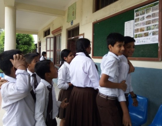 Students looking the posters at the notice board with information on snakes in Nepal 1