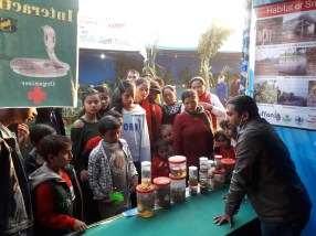 Kamal Devkota sharing his knowledge on snakes, snakebites and snake conservation to the visitors 2