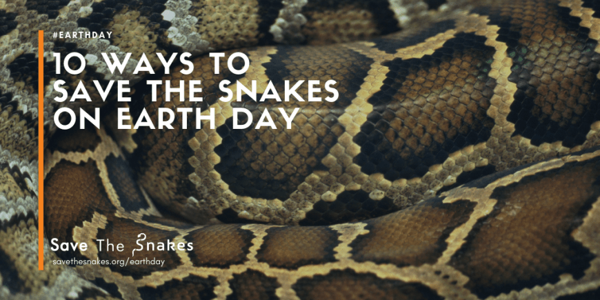earth day, snakes