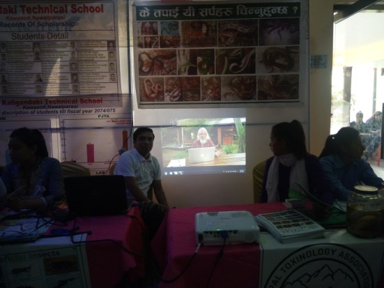 Showing educational video to the visitors