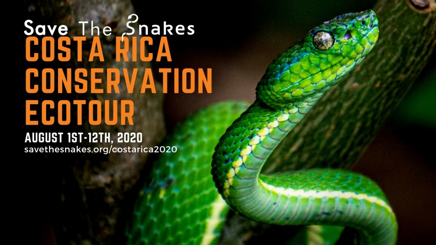 Save-The-Snakes-Costa-Rica-2020