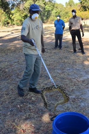 Snake handling training