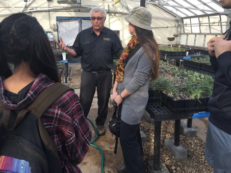 Mr. David had to miss a class due to the arrival of around 3,500 flowers, so the class decided to go for a visit to the greenhouse ad check up on them.