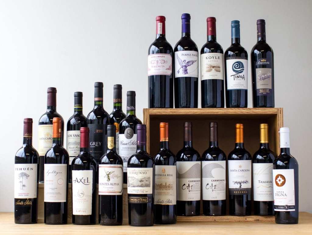 Vins: L'incroyable histoire de la grande vidure