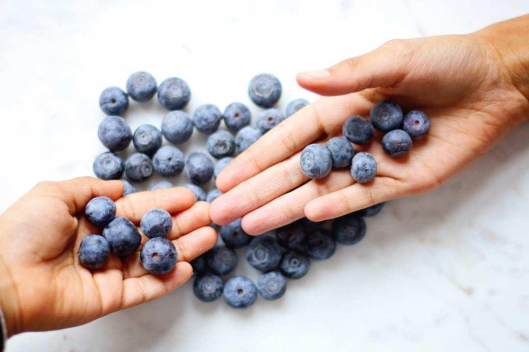 myrtilles Les fruits des bois, un savoureux allié contre le cancer