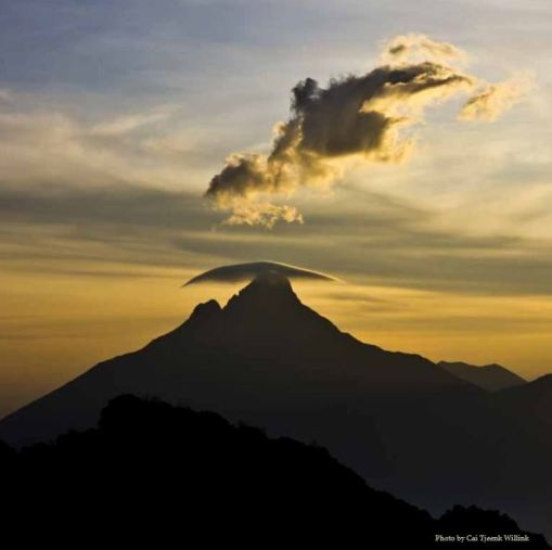 http://gorillacd.org/files/2011/06/virunga-tourism-brochure-june-2011.pdf