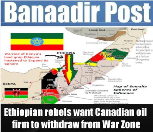 http://newsfromsomalia.wordpress.com/2013/02/19/somalia-ethiopia-ethiopian-rebels-want-canadian-oil-firm-to-withdraw-from-war-zone/