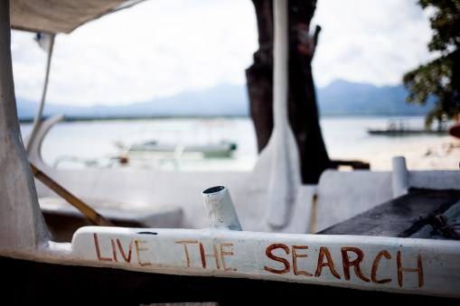 live the search