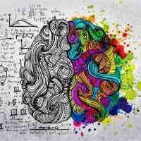 Hemisferios derecho e izquierdo del cerebro. ¿Mundos diferentes?