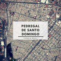 El Pedregal de Santo Domingo. La invasión de territorio más grande de América Latina