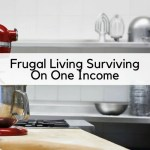 Frugal Living Surviving On One Income