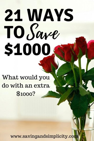 hat would you do with $1000? Book a vacation? Pay of debt? Pay for household expenses? Save for something special? Set up an emergency fund? Learn 21 ways to save $1000.