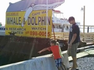 Savings at the Jersey Shore:  Cape May Whale & Dolphin Watch Cruise Deal