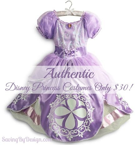 authentic Disney princess costume deal