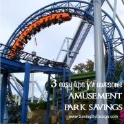 3 Easy Tips for Awesome Amusement Park Savings