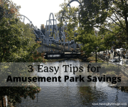 3 Easy Tips for Amusement Park Savings