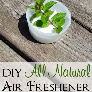 DIY Natural Air Freshener – Only 2 Ingredients Needed!
