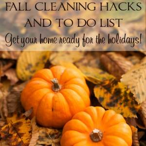 Fall Cleaning Hacks and To Do List – Get Your Home Ready for the Holidays!