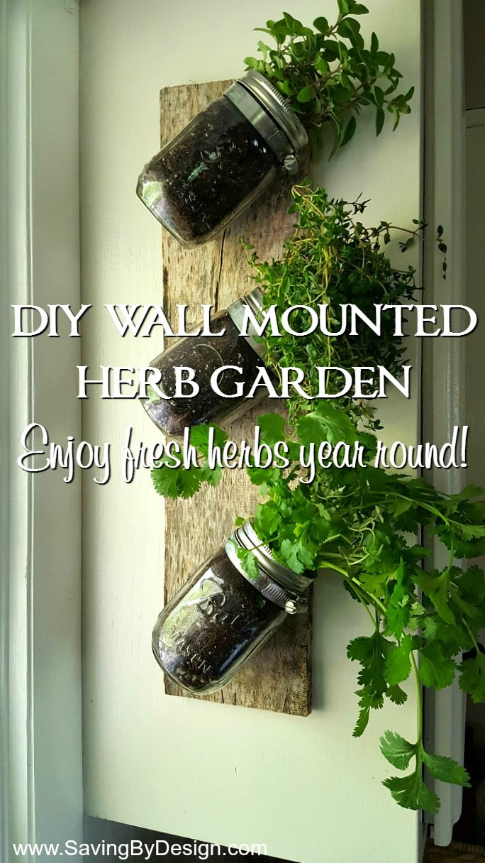 ... Wall Mounted Herb Garden To Enjoy Fresh Herbs Year Round! Mason Jars,  Clamps, And A Piece Of Wood Are All You Need To Create