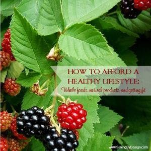 How to Afford a Healthy Lifestyle on a Budget – Whole Foods, Natural Products, and Getting Fit