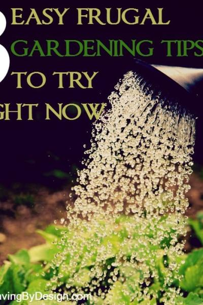 3 Easy Frugal Gardening Tips to Try Right Now