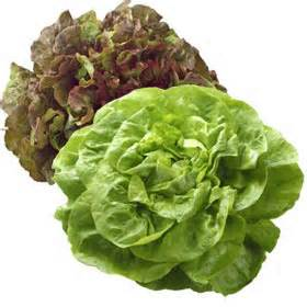 SavingStar Healthy Offer Of The Week: Save 20% on any single purchase of loose, unwrapped Lettuce