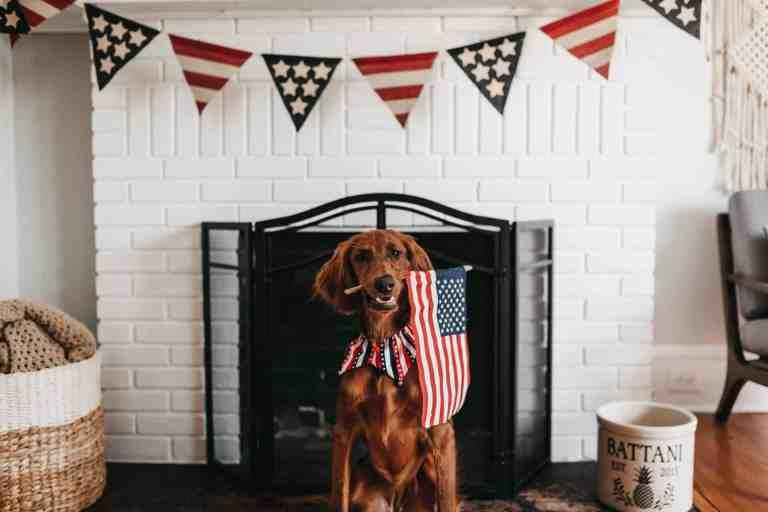 50 Patriotic 4th of July Decor Ideas