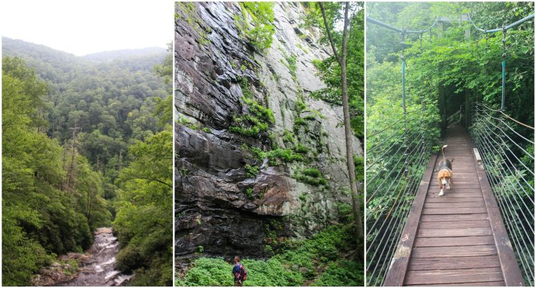 hiking dismal trail caesars head state park south carolina
