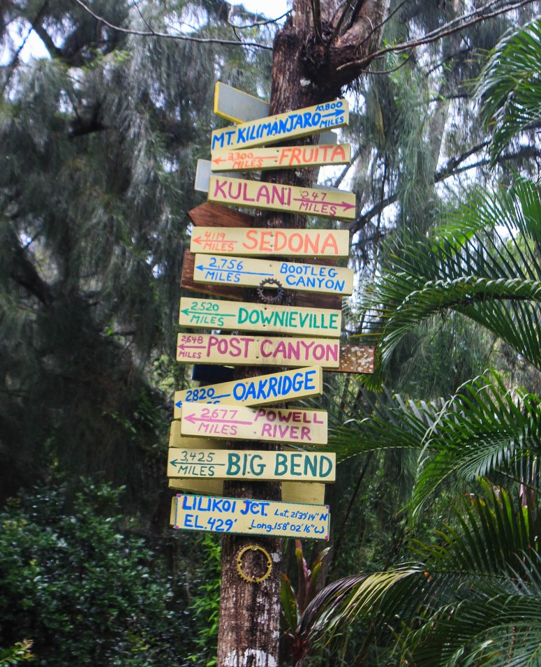 lilikoi junction signs in the woods after the ehukai pillbox north shore oahu hawaii