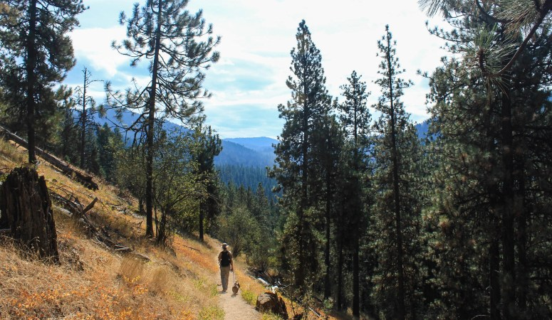 Avoiding Wildfires // Hiking Mineral Ridge