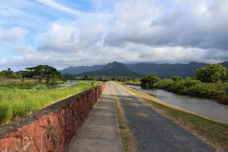 kawainui marsh walk on independence day 2018