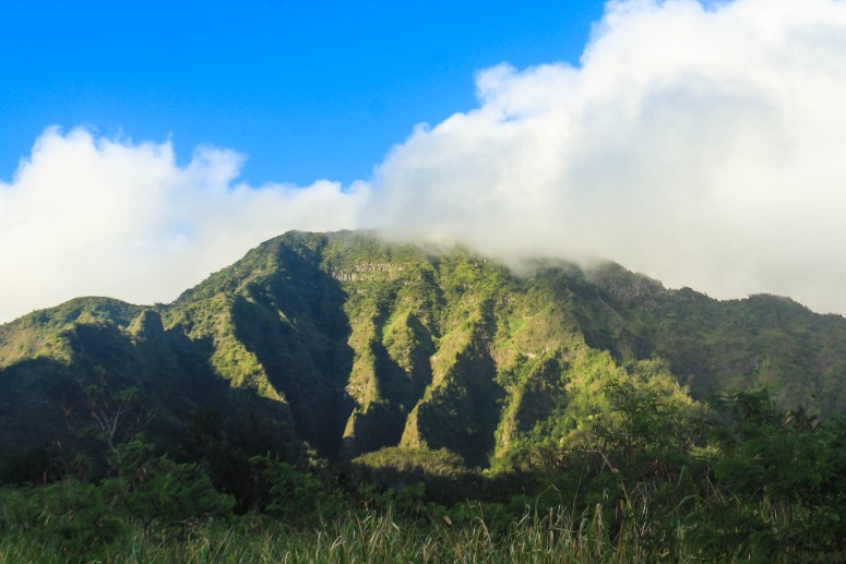 Ka'ala Mountain