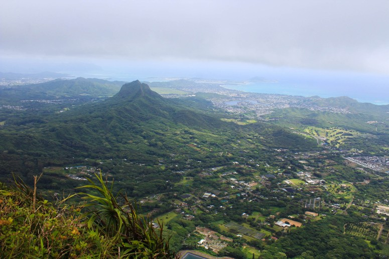 view of olomana from hiking kulepeamoa ridge loop trail oahu hawaii secret oahu trail guide