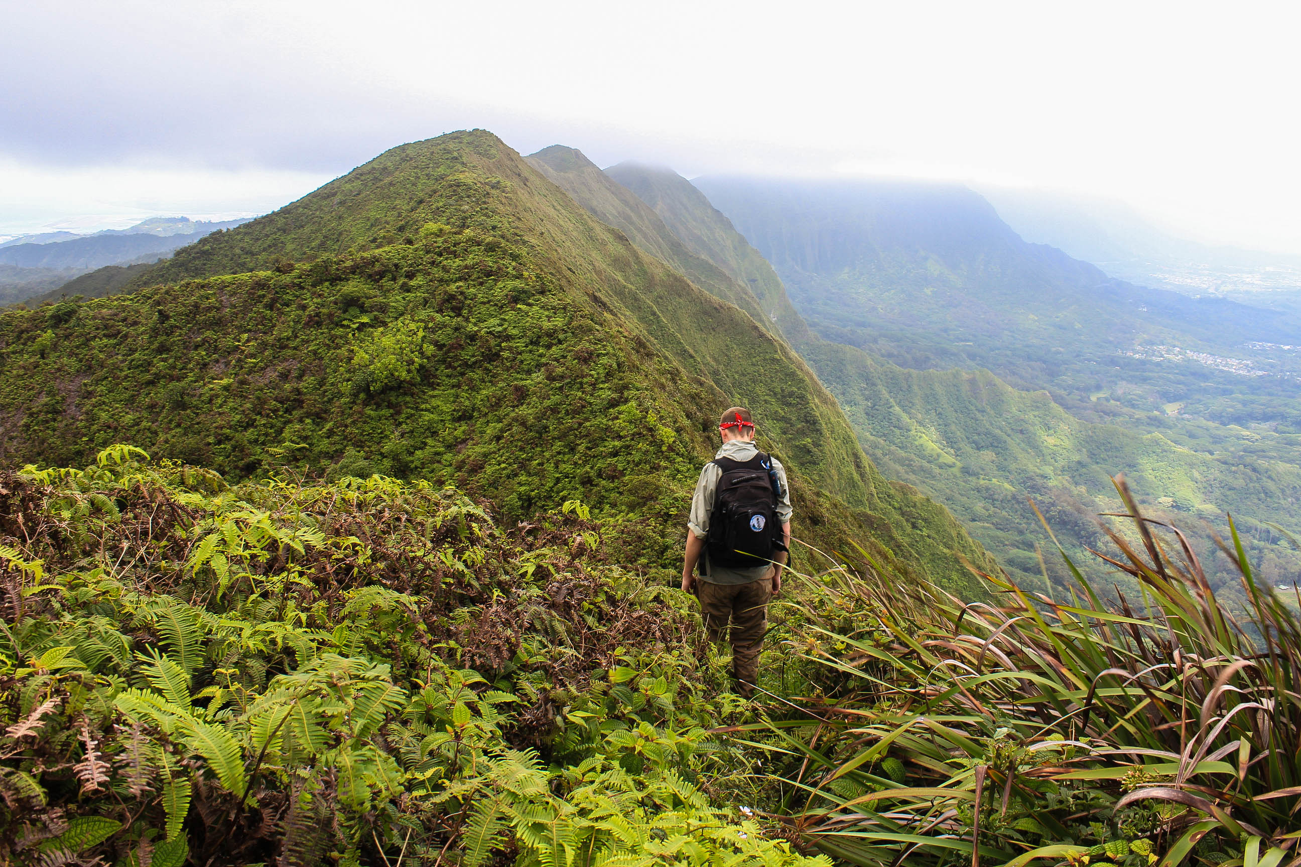hiking the kst on the kulepeamoa ridge loop trail windward oahu hawaii