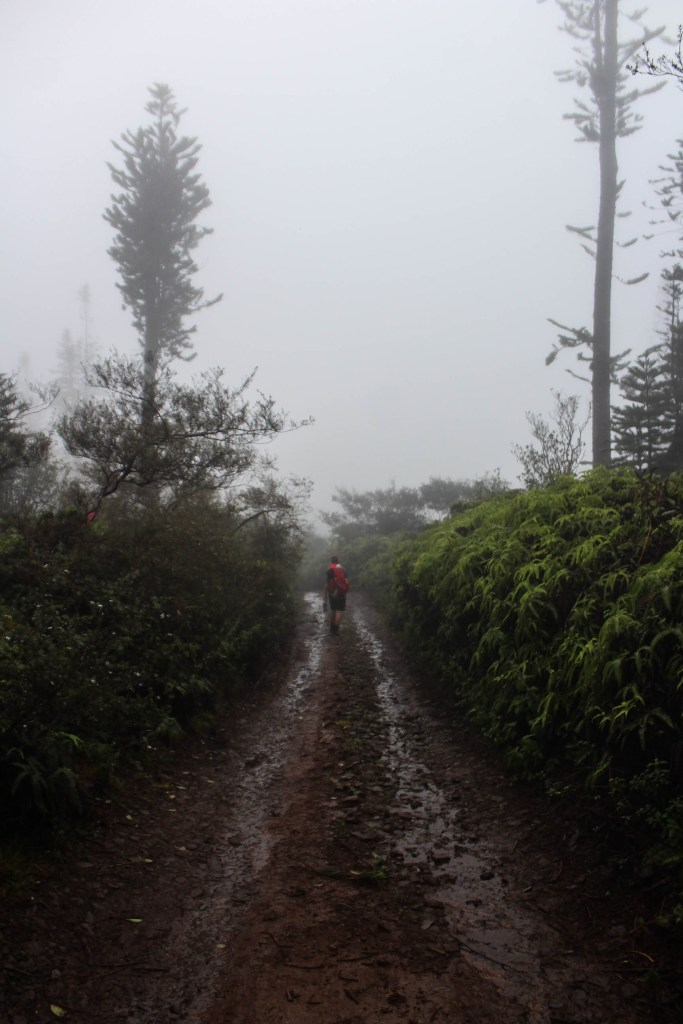person hiking on dirt road in the rain