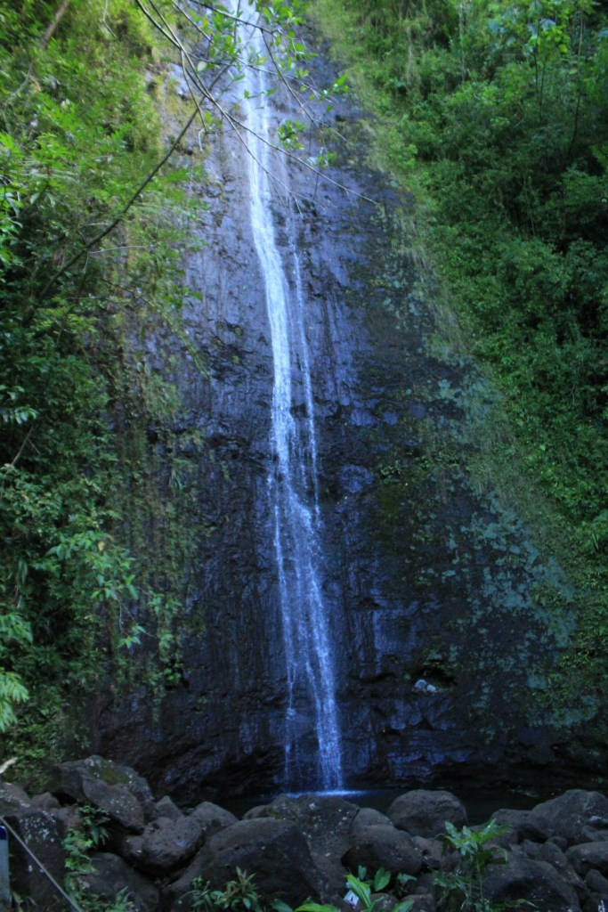 Manoa Falls (4 of 14)