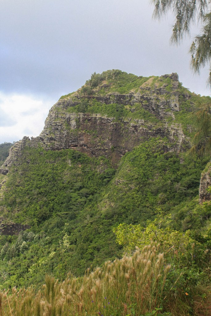 Nounou Mountain, also known as Sleeping Giant, an easy beautiful hike on the island of Kauai