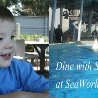 SoCal Guide - SeaWorld San Diego Dine with Shamu