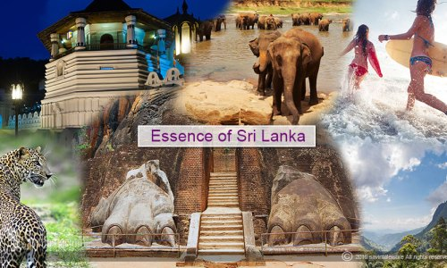 essence-of-sri-lanka