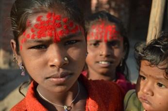 Saffron India