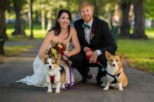 A bride and groom and their two dogs