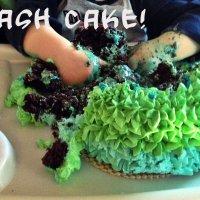 Playing with Cake - Smash Cake