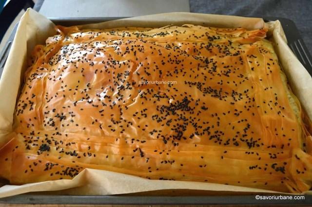 coacere placinta traditionala cu branza telemea de oi burduf framantata (3)