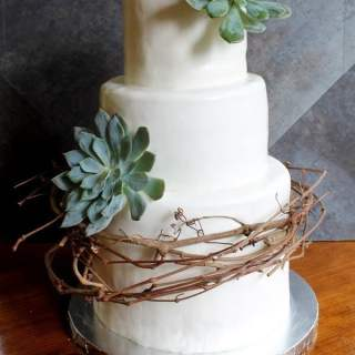 Vine and Succulent Cake Design