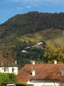 irouleguy vineyards