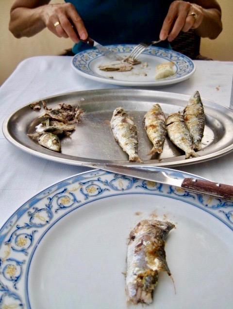 fresh sardines grilled savor the harvesst