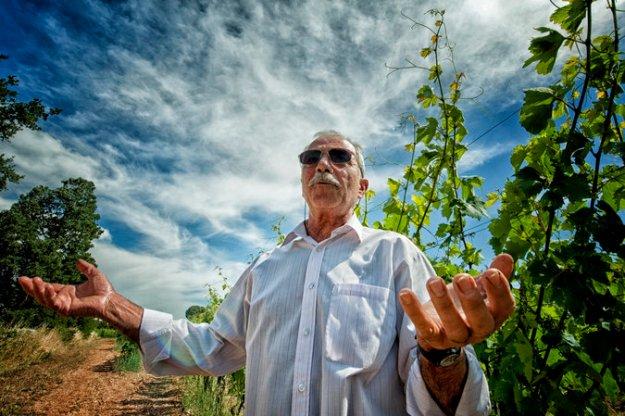 Pasquale Petrera Fatalone wines gioia del colli doc puglia Italy