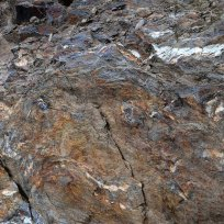 Grey schist soils in Collioure and Banyuls