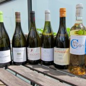 AOC Roussillon white wines
