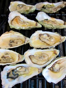 r_oysters grilled